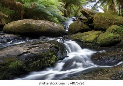 Tasmania, Australia. Horseshoe Falls, Mount Field National Park