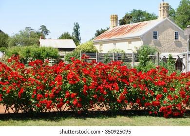 tasmania convict national rose garden world heritage site