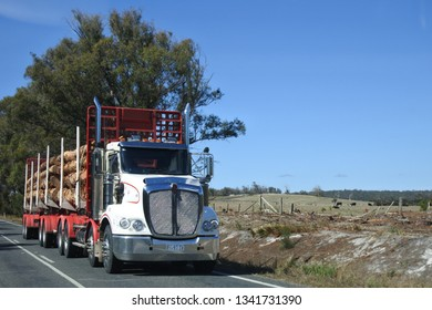 TASMANIA - MAR 14 2019:Logging truck in Tasmania, Australia. Forestry in Tasmania Australia has been conducted since early European settlement in the 19th century.