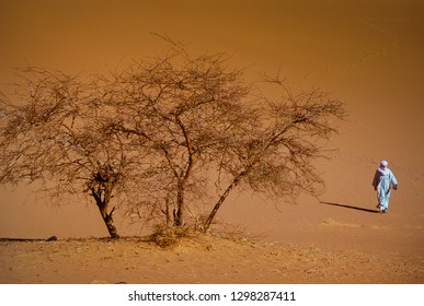 TASSILI N'AJJER, ALGERIA - JANUARY 10, 2002: Unknown man walks in the sand dunes of the Algerian Sahara desert, Africa, Tassili N'Ajjer National Park