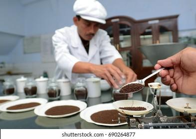 Taste the flavor of the tea in laboratory the factory Wonokerto, Lumajang, East Java, Indonesia on November 15, 2013