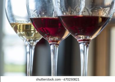 Tasting a Flight of Three Wines in a Winery