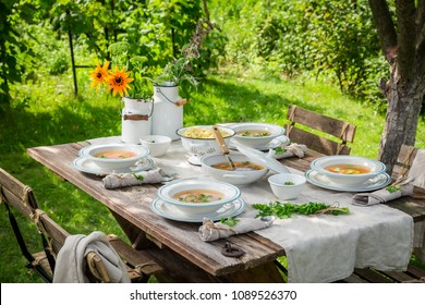Tasty chicken soup served in garden on sunny day