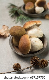 Tasty food - fresh porcini boletus oak muchrooms, high quality, ready to cook with rice, potatoes and in soup