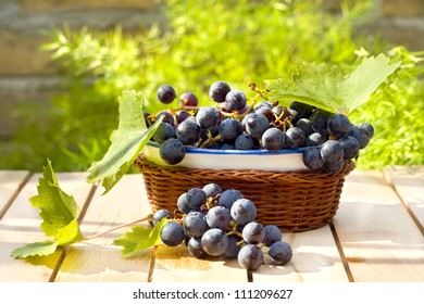 tasty and fresh grape