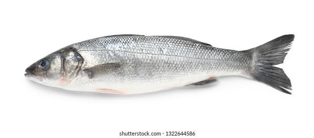 Tasty fresh seabass fish on white background