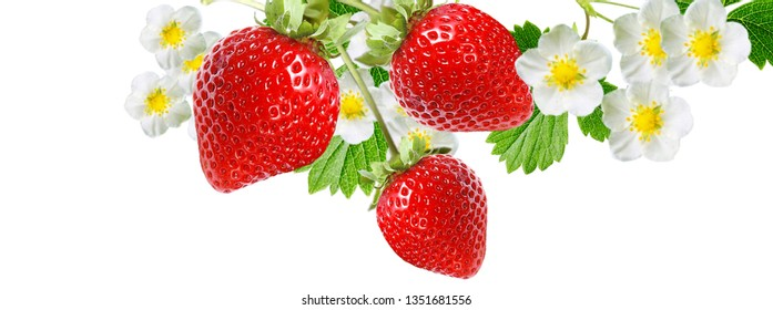 tasty fruits berries strawberry