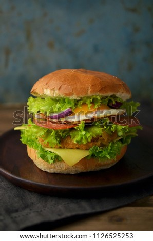 Tasty homemade burger with fried egg