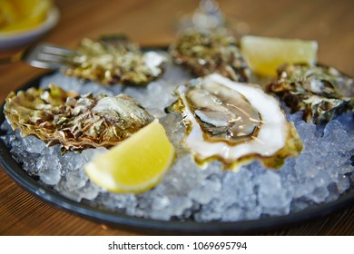 Tasty oysters with lemon on a plate with ice.
