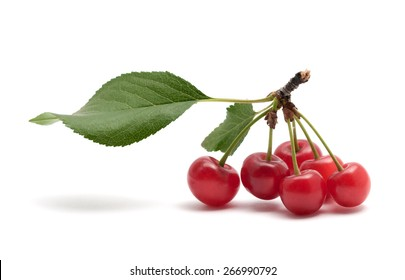 Tasty red  ripe cherry on the background