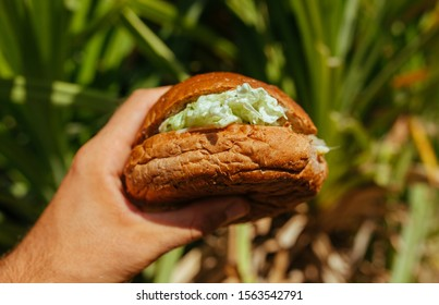 Tasty Sandwich with ham and salad in the hand