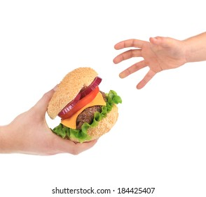 Tasty sandwich in hands. Isolated on a white background.