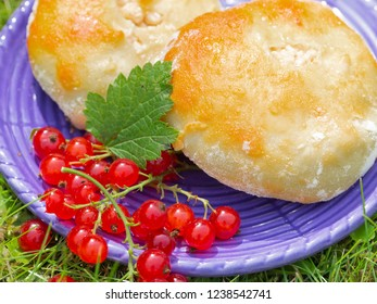 tasty sweet fresh cheesecake pies on a blue plate with red currant berries on the green grass outdoors in summer
