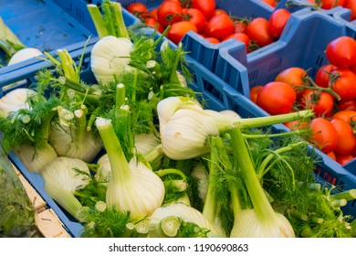 Tasty vegetables being sold at a small city market. Fresh ingredients for any meal or salad recipe for vegetarians.