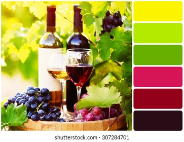 Tasty wine on wooden barrel on grape plantation background and palette of colors