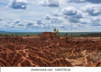 The Tatacoa desert is the second most extensive arid zone of Colombia after the peninsula of La Guajira, it is one of the most attractive natural scenarios of Colombia, of earth of ocher and gray colo