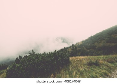 Tatra mountain forest  in Slovakia covered with clouds. autumn colors. - vintage film retro effect