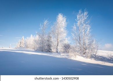 Tatra Mountain in winter, landscape wiht wiev of Tatra Poland Pieniny zakopane