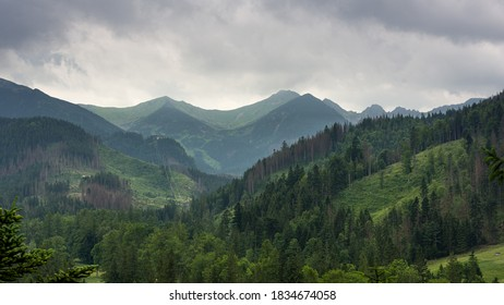 Tatra Mountains in a national park in Poland. - Shutterstock ID 1834674058
