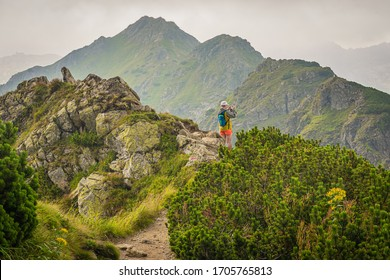 TATRA MOUNTAINS / POLAND - JULY 2018: Woman hiking, standing on the path in the mountains and taking the picture, Polish Tatra mountains, green mountain pine and rocks