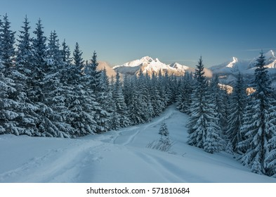 Tatra mountains winter landscape, tourist trail in snow, Poland