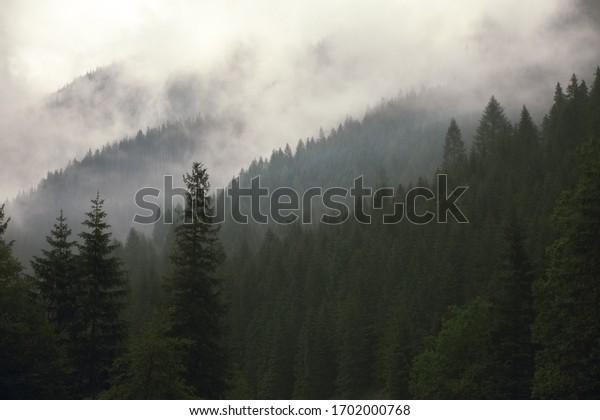 Tatra National Park, Lesser Voivodeship/ Poland- 06.06.2018: Blue Hiking Trail- Czarny Staw Gąsienicowy