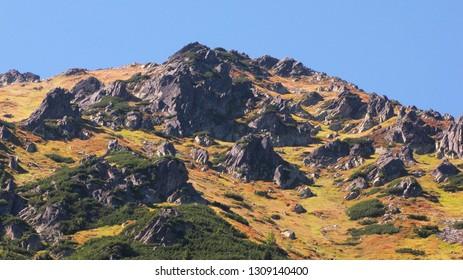 tatra,zakopane,tatra,nature in tatra,landscape,nature,travel,mountain,sky,view,rock,tree,autumn,mountains,blue,scenery,beautiful,forest,tourism,outdoor,hiking,green,scenic,natural,season