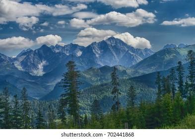 Tatry at Poland and Slovakia at 2017.Near Marine Eye and Black Pond, Rysy mountain. Wild animals, beautiful nature, lakes and rivers. - Shutterstock ID 702441868