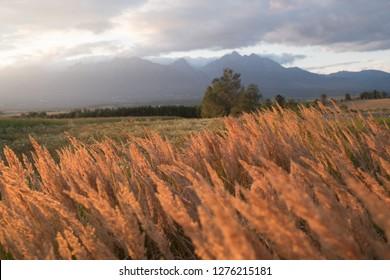 vysoké tatry sunset
