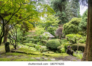 Tatton Park, Cheshire, England -  17 July, 2020: Scenic corner of Japanese Garden with Tea House in Tatton Park, UK.