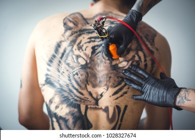 A tattoo artist makes a tattoo in the salon on the back of a client. Tattoo of a tiger. The tattoo on his back. Art concept. Close up