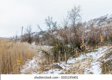 Taurian snow-covered steppe in winter. Zaporozhye region, Ukraine. February 2018