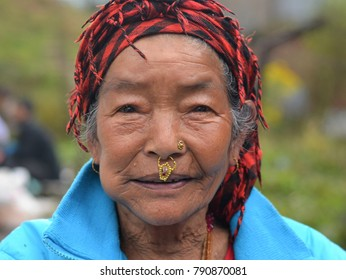 TAWANG, INDIA - OCT 13, 2017: Elderly Nepali Rai woman with distinctive nose jewelry (nose ring and nose stud, septum piercing and nostril piercing) poses for the camera at Tawang, on Oct 13, 2017.