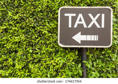Taxi sign on green leaves wall