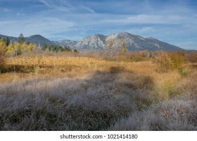 Taylor Creek Meadow and Mount Tallac