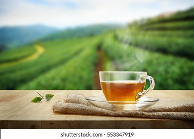 Tea cup with organic green tea leaves on the wooden table and the tea plantations background
