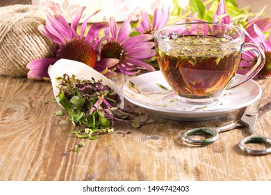 Tea drink with Echinacea purpurea (Echinacea purpurea) dried folk medicine