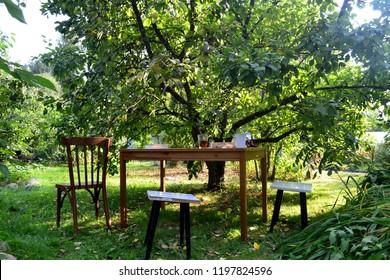 Tea in the garden in summer