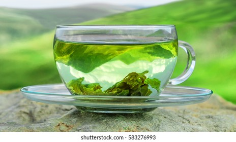 Image result for images of green tea