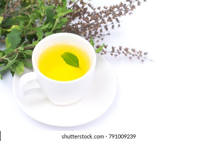 Tea of holy basil in cup isolated on white background,Ocimum sanctum, tulsi plant