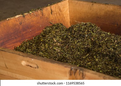 Tea leaves in the Gorreana tea factory on Sao Miguel, Azores
