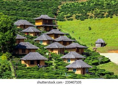 Tea Plantation resort in Ban Rak Thai. Mae Hong Son, Thailand