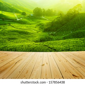 Tea Plantations at Cameron Highlands Malaysia, wood floor perspective. Sunrise in early morning with fog.