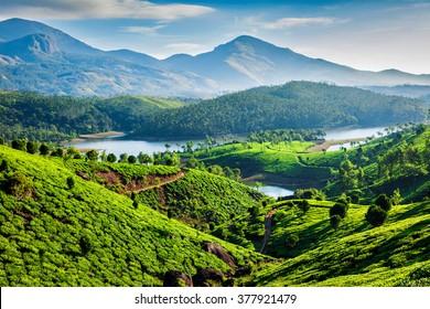 Plantações de chá e rio Muthirappuzhayar em colinas perto de Munnar, Kerala, Índia