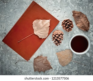 Tea when reading a book. Tea, a book, fallen leaves, bumps on a concrete table. Autumn winter atmosphere for reading a new story. Top view. Flat lay.