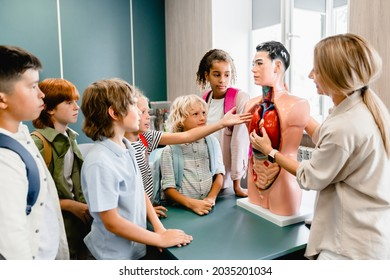 Teacher explaining showing internal organs at the educational dummy manikin at the biology lesson class. Anatomy lesson at school