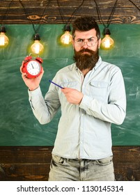 Teacher in eyeglasses holds alarm clock and pen. Bearded hipster holds clock, chalkboard on background. Man with beard and mustache on strict face stands in classroom. Discipline concept.