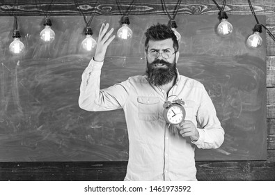 Teacher in eyeglasses holds alarm clock. Schedule and regime concept. Bearded hipster holds clock, chalkboard on background, copy space. Man with beard on shouting face on arguing expression.