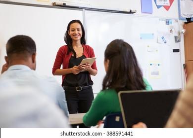 Teacher adult