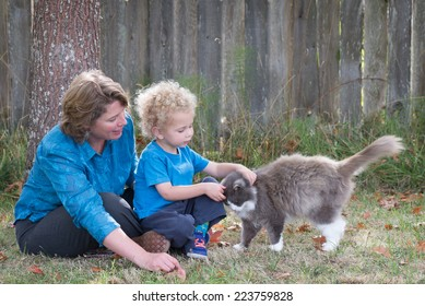 Teaching kindness to animals is an important parental lesson. Here, a mother watches as her young son tenderly pets their cat who rewards him with a head bump.